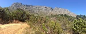 IMG_6568-Deer Park to Tafelberg Road