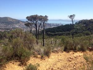 IMG_6574-Deer Park to Tafelberg Road City View