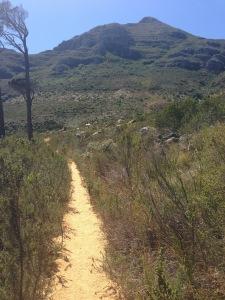 IMG_6575-Deer Park to Tafelberg Road trail